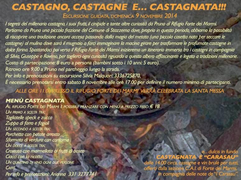 castagnata_2014
