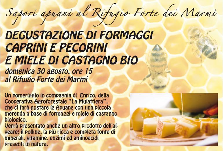 miele_e_formaggi