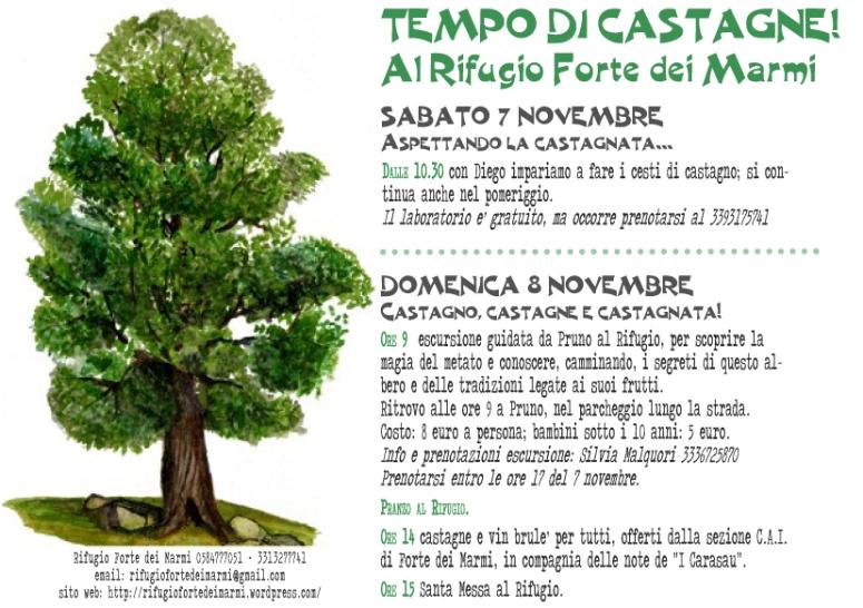castagnata_2015